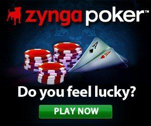 banner zynga 300x250 - banner-zynga